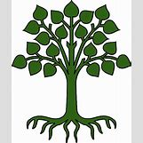 Family Tree Roots Background   534 x 640 png 187kB