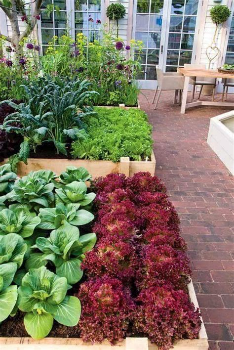 Better Homes And Vegetable Gardens News Better Homes And Gardens Vegetable Garden