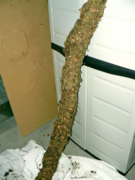 how to make a fake tree diy fake tree branch petdiys com