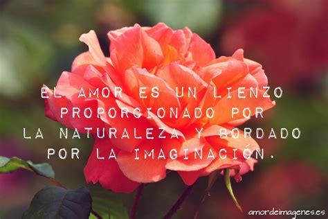imagenes muy bonitas con rosas rosas bonitas de amor