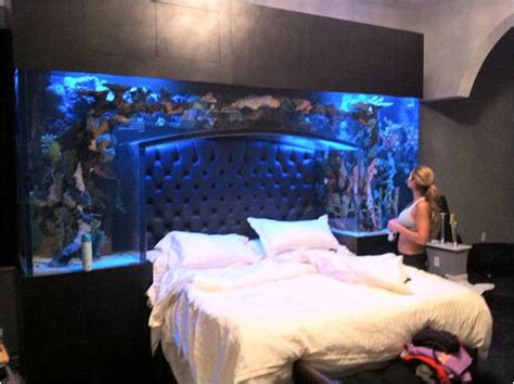 fish tank bed headboard could having a fish tank at home improve your health