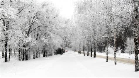 imagenes invierno nieve fotograf 237 a en la nieve curos de fotograf 237 a en madrid