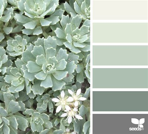 sherwin williams poised taupe color palette sherwin williams poised taupe color palette best