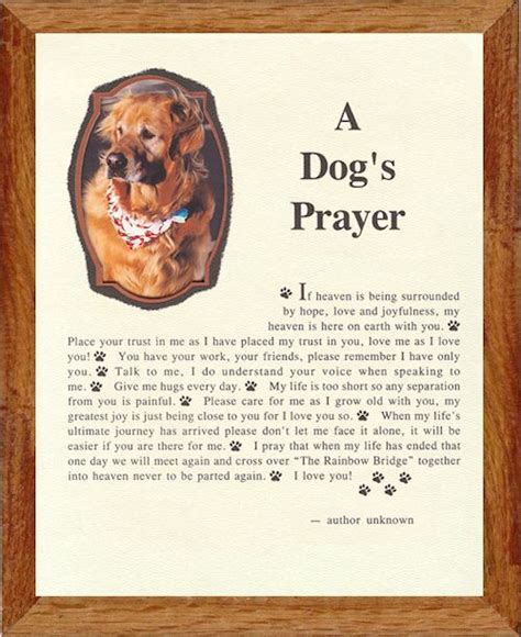 dogs prayer framed memorial pet poems from mountian egde rainbow bridge pet boutique