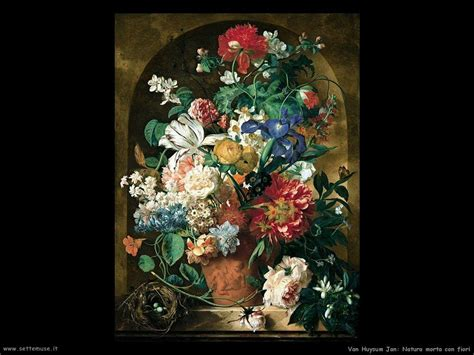 fiori nella pittura huysum jan pittore biografia foto opere settemuse it