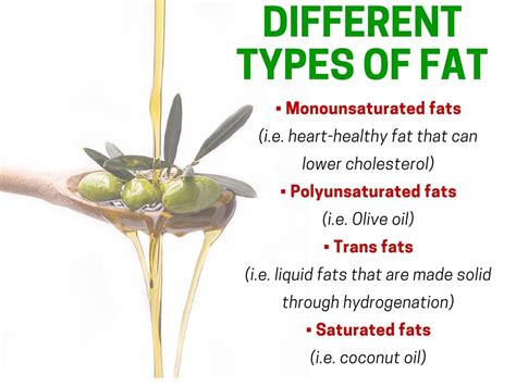 healthy fats types 7 high foods that are for you