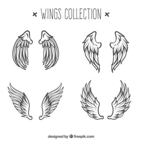 flugel engel vektoren fotos und psd dateien kostenloser
