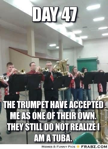 Funny Band Memes - band memes on tumblr