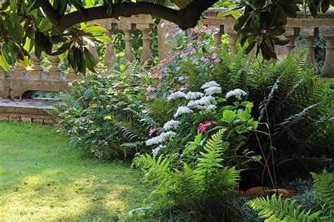 giardini in ombra giardini