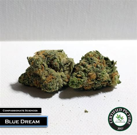Garden State Dispensary Menu Blue Strain Information 187 Mmp Directory