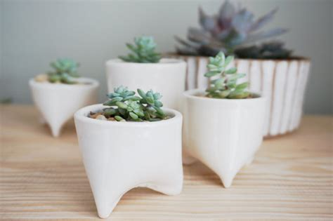 Mini Planters by Made To Order Mini Piglet Planter White White Planter