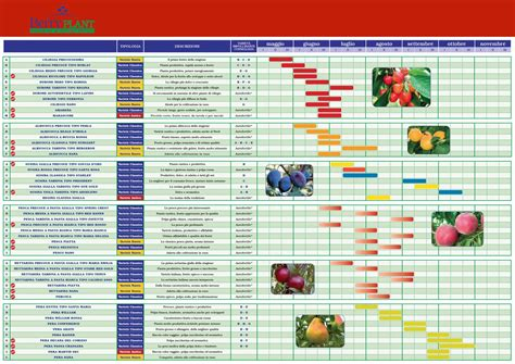 calendario da tavola quot zuliani vivai piante quot progettare parco e giardino