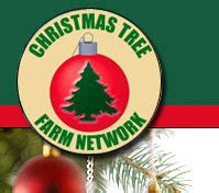 real christmas trees and lots christmas tree farm network