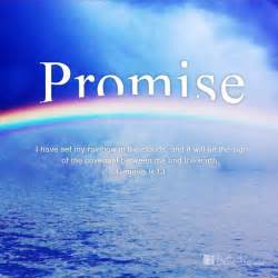 colorful bible verses 72 best god s rainbow images on bible verses