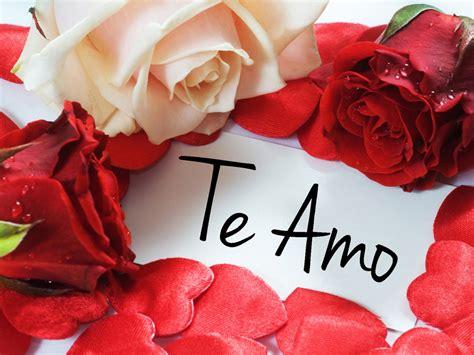 imagenes de imagenes del dia del amor y la amistad imagenes de amor para el 14 de febrero dia de san valentin