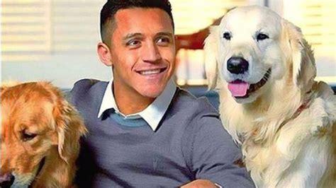 alexis sanchez y sus perros 161 ternura total alexis sanchez vuelve a dedicar conmovedor
