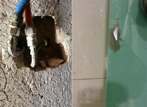 bathroom peep holes couple finds peephole in mexican hotel room ny daily news