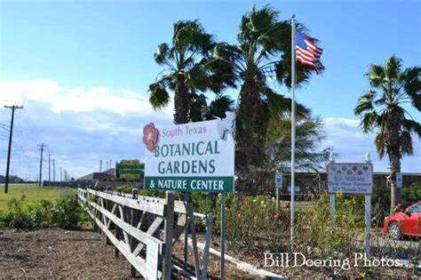 Botanical Garden Corpus Christi Entrance To The Botanical Gardens Nature Center Picture Of South Botanical Gardens