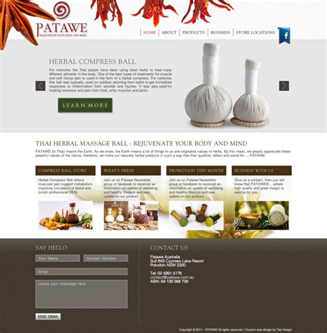 Fab Site Daszigncom by Website Design For Patawe Gt Fab Web Design