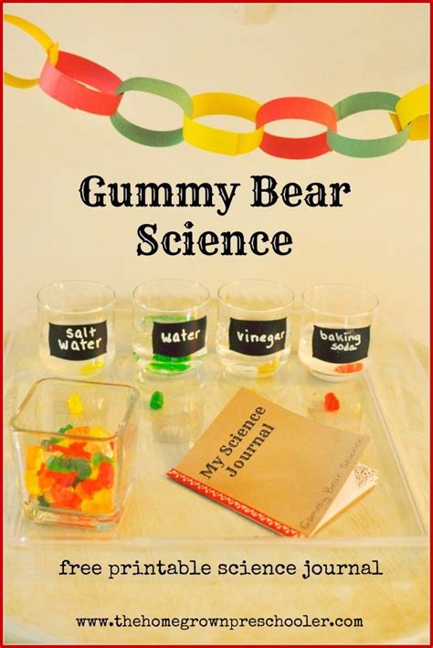 great science experiment for preschoolers with a free