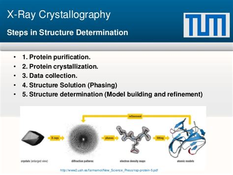 protein x crystallography protein structure determination