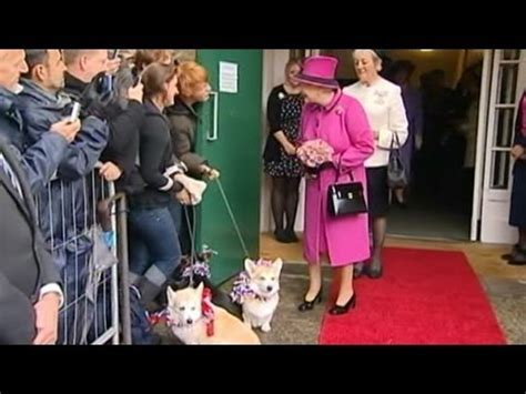 the queen s corgis all the queen s corgis youtube
