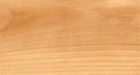 del java studio arsitek jenis kayu interior
