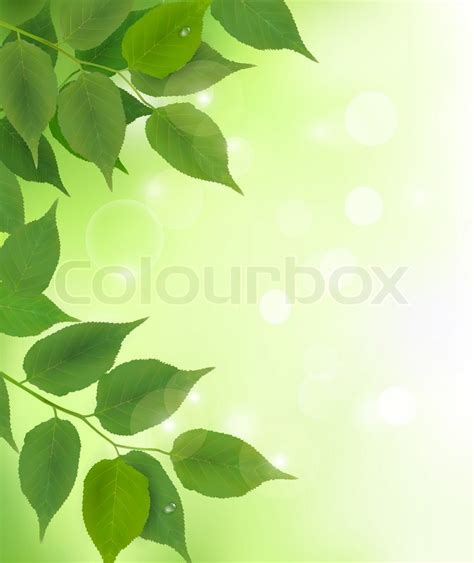 Poster Daun Suplir nature background with fresh green leaves stock vector