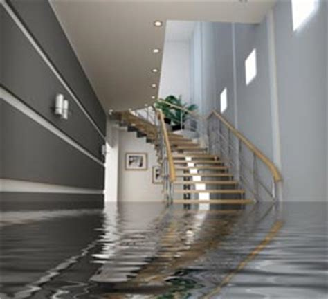 basement flooding and how to fix it atlanta ga water
