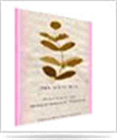 Organic Guru Detox Foot Pads by Health Meditation Supplies