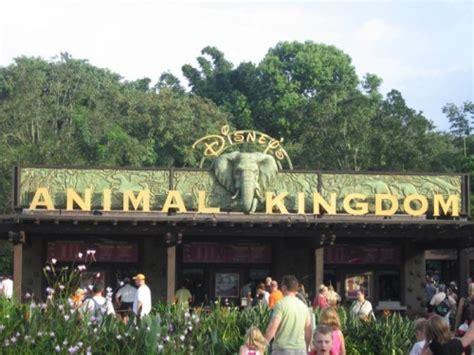 imagenes animal kingdom espectaculos en disneyland orlando turismo en disneyland