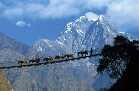 hunza  packages honeymoon hunza valley tours