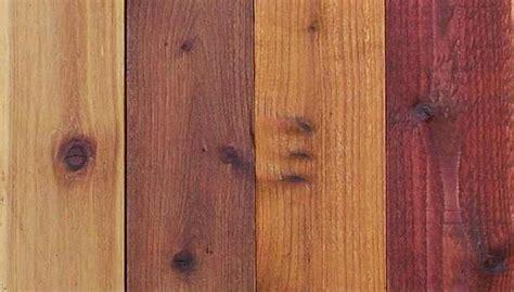 types  varnish  wood stain