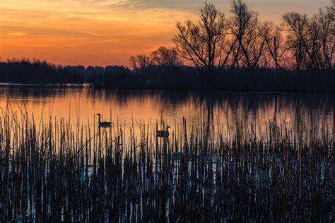 sunrise  lake logo news