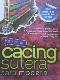 Cacing Di Selokan review buku beternak cacing sutera cara modern