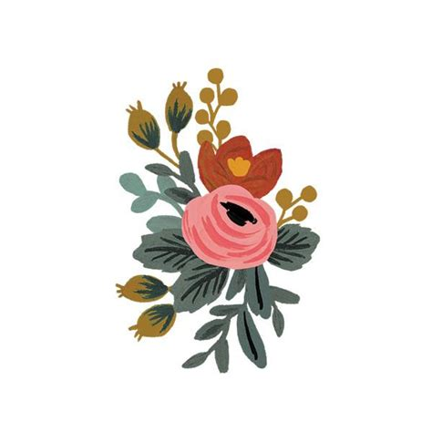 Paper Company - 1000 images about flowers illustration on