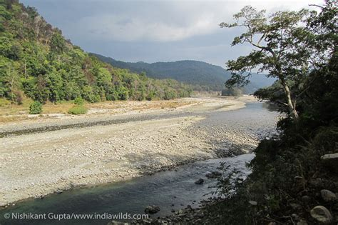 River Region Detox by Local Stakeholders Participation Key To Protecting The