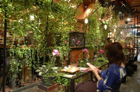 green tea house green picture of aoyama flower market tea house shibuya tripadvisor
