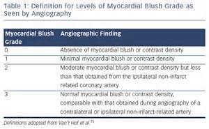 table  definition  levels  myocardial blush grade