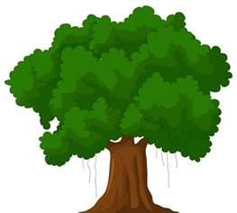 trees clip art many interesting cliparts