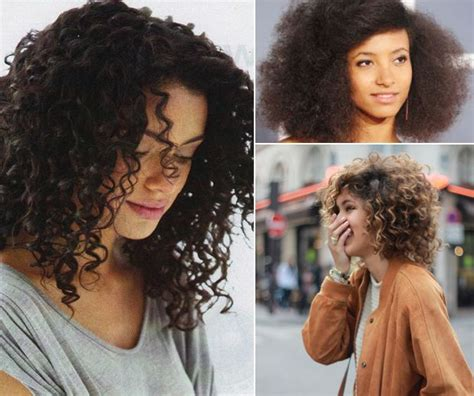 Catok Curly Type 189 the best haircuts for curly thick and hair thick hair hair type and haircuts