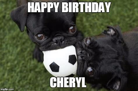 happy birthday pug meme pugs are imgflip