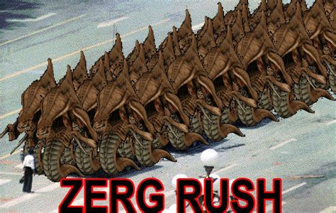 Zerg Rush Know Your Meme - image 18578 zerg rush know your meme