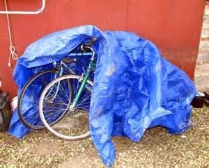 designing   bicycle storage shed    dollars