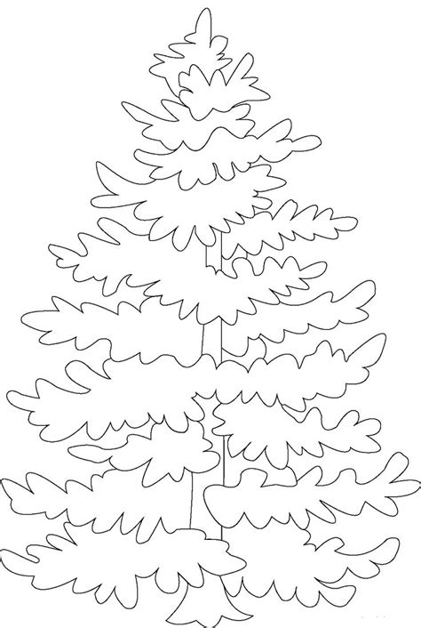 coloring page of pine trees free coloring pages of pine tree