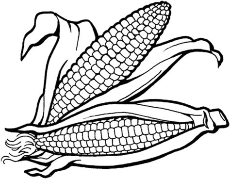 corn clipart food cliparts and photos