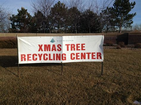 recycle christmas trees christmas tree recycling