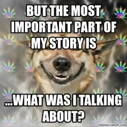 Stoned Dogs Meme - stoner dog