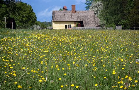 meadow cottage photograph by stephen norris