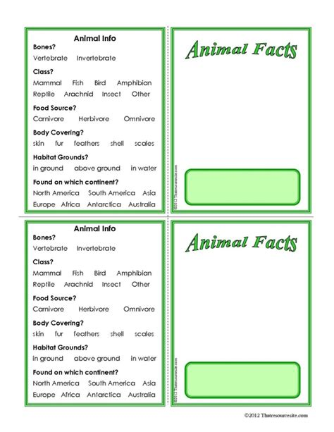 fact card template science animal facts easy blank learning card that